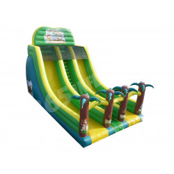 Toboggan Jungle Double Sliders