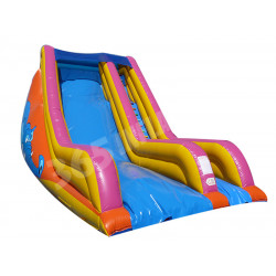Tobogan Inflable De Bosse